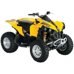quad can am renegade 800